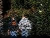 nachtklettern-projektion_3922957685_b