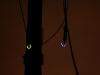 nachtklettern-im-kletterwald-dresdner-heide_2685203360_b