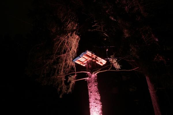 nachtklettern-im-kletterwald-dresdner-heide_2685215192_b
